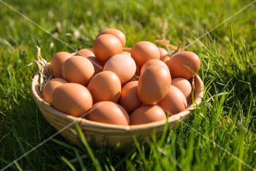 Brown hen's eggs in a basket in a field