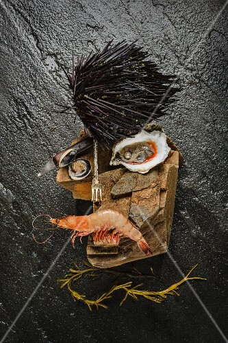 A rock star face made from seafood and a sea urchin