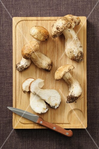 Fresh porcini mushrooms on a wooden board
