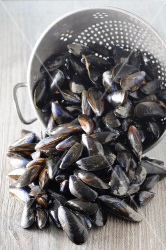 Fresh mussels and a colander on a wooden table
