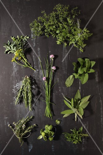 Various herbs on a dark grey surface