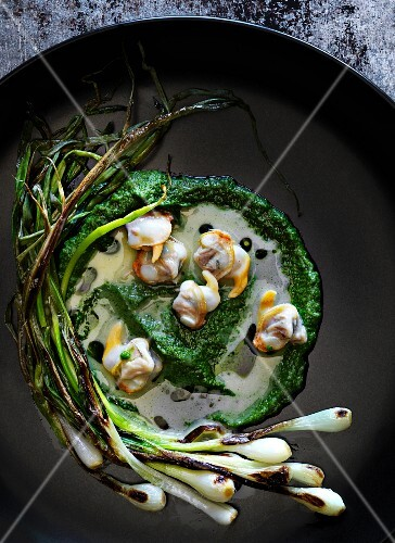 Broccoli purée with young grilled garlic and mussels