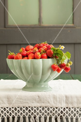 Freshly picked strawberries in a white bowl on a table