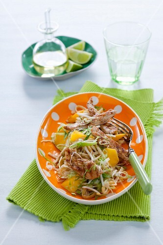 Pointed cabbage salad with mango, grilled chicken breast and mie noodles
