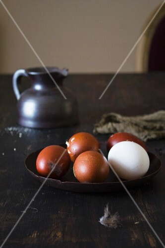 Brown eggs and one white egg with feathers
