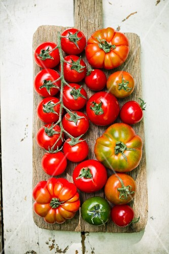 Various types of tomatoes on a wooden board