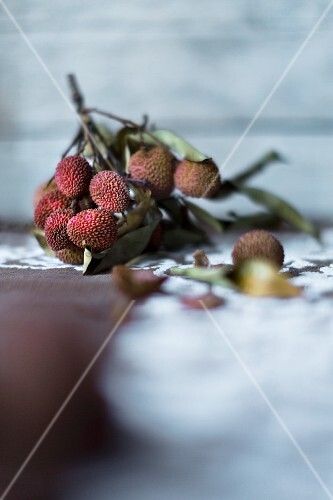 A sprig of lychees and leaves on a vintage tablecloth against a wooden wall