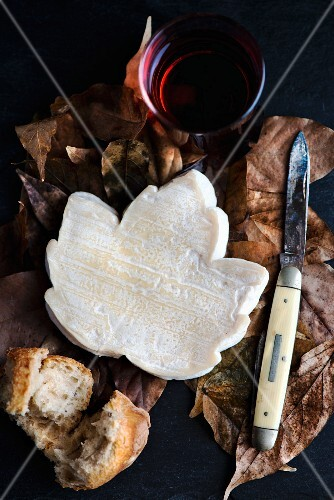French goat's cheese shaped like a maple leaf surrounded by autumnal leaves with a pocket knife, a piece of baguette and a glass of red wine