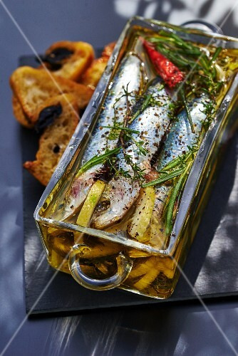 Fish terrine with sardines, fresh herbs, spices and lemon