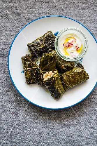Stuffed vine leaves with a yoghurt dressing