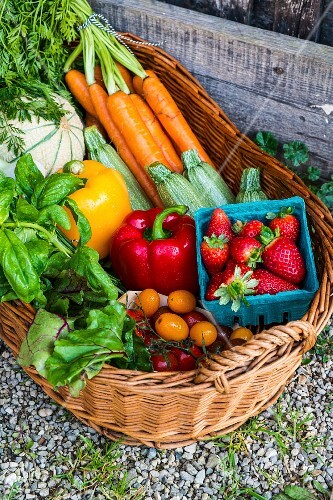 A basket of fresh vegetables, berries and herbs
