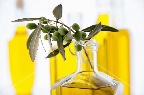 A sprig of olives in a bottle of olive oil