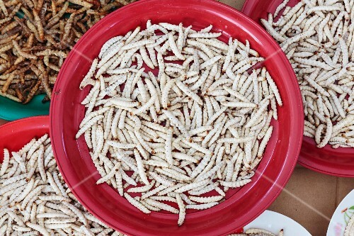 Bamboo worms in red plastic bowls at a market in Vientiane, Laos