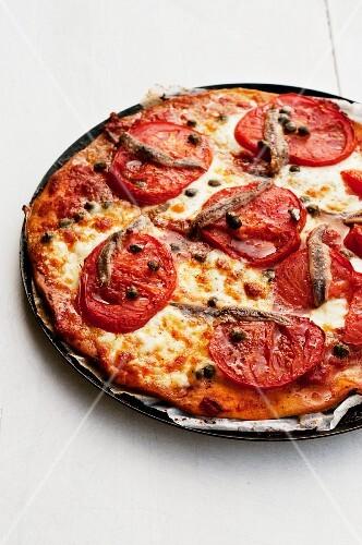 pizza mit tomaten sardellen kapern bild kaufen 11004833 stockfood. Black Bedroom Furniture Sets. Home Design Ideas