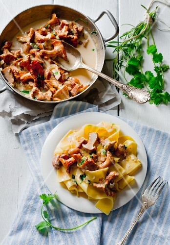 Pappardelle pasta with braised chanterelle mushrooms