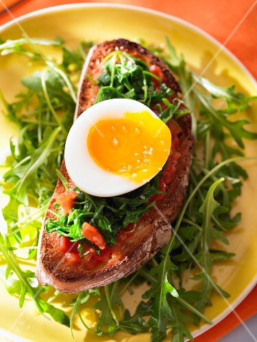 Open-faced egg, rocket and tomato sandwich – StockFood