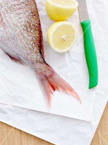 A fish tail, a lemon and a knife on a piece of paper