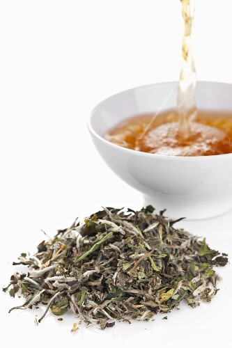 White tea (leaves and drink)