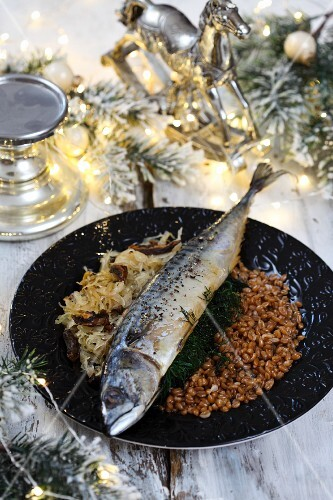 Mackerel with white cabbage and grains for Christmas