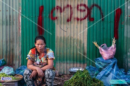 A market woman sitting waiting against a metal wall, Vientiane, Laos