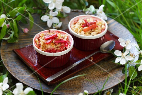Rhubarb crumble in baking dishes on a summer meadow