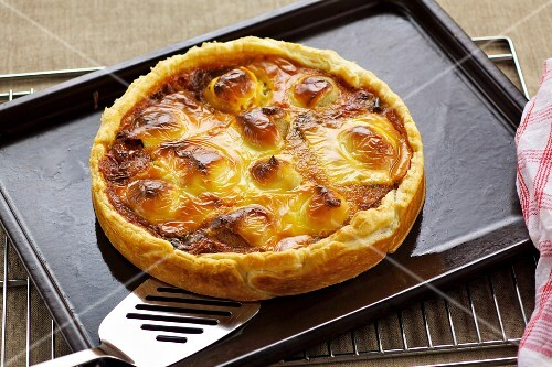 Onion and potato tart topped with melted cheese