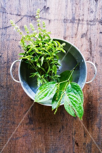A sprig of pepper and lemon basil