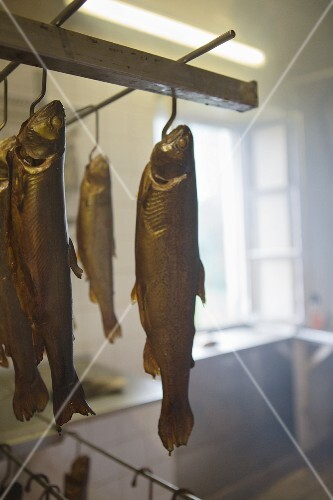 Smoked trout hanging on hooks
