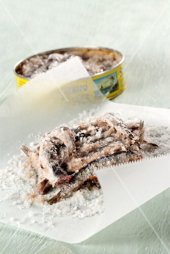 Sardines preserve in salt on a piece of white parchment paper