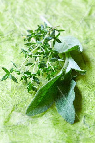 Sprigs of thyme and sage