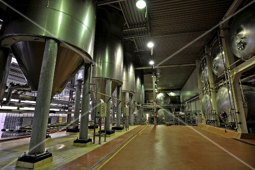 Belgian beer (Mort Subite, Lambic) in tanks in a brewery