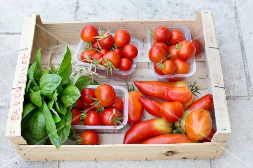Various types of tomatoes and a bunch of basil in a wooden crate