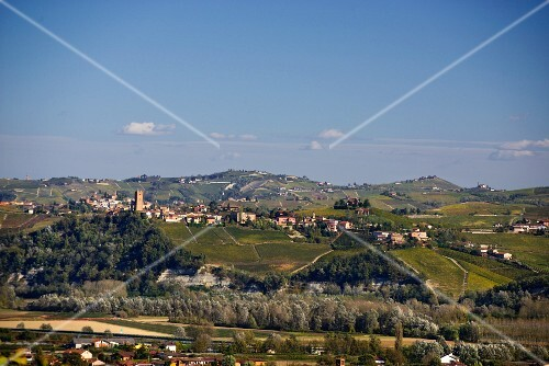 A view of Barbaresco from Guarene