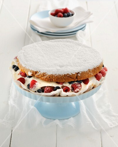Frozen yoghurt cake with berries