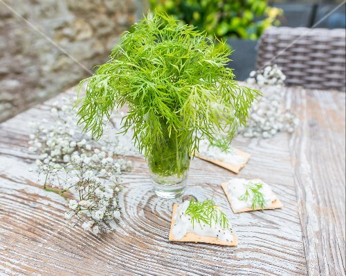 Dill in a glass of water on a wooden table in a garden