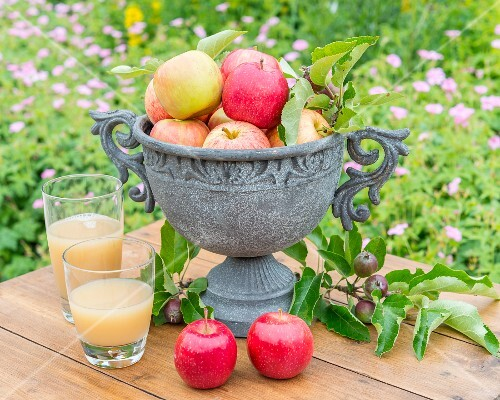 Apples in a stone amphora with two glasses of apple juice on the garden table