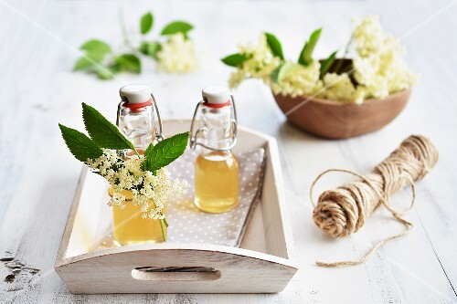 Homemade elderflower syrup with fresh elderflowers