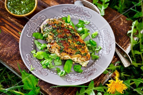 Grilled chicken breast fillet with a herb pesto