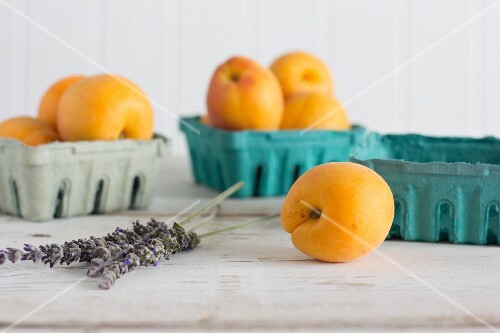 Apricots and lavender