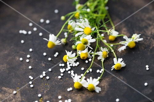Chamomile and globules