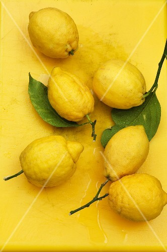 Fresh lemons against a yellow background