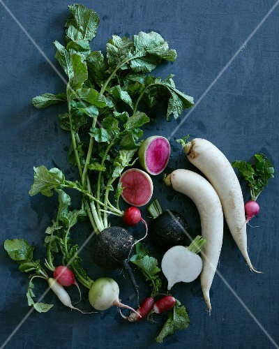 Various types of radishes