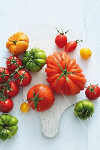 Various types of tomatoes (seen from above)