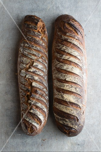 Pain d'Antan (French country bread)