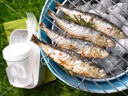 Grilled rosemary sardines