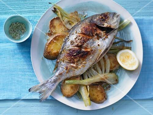 Gilt-head bream with fennel and potato