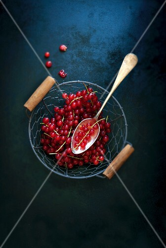 Fresh redcurrants with a spoon in a wire basket