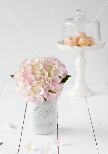 Hydrangea flowers and miniature Bundt cakes