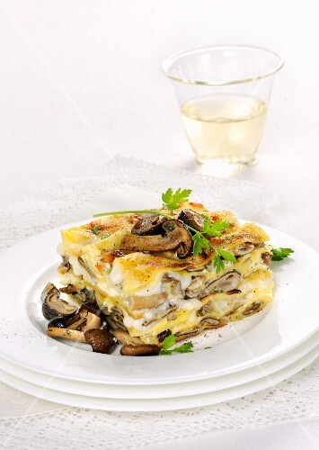 Mushroom lasagne with pioppini mushrooms