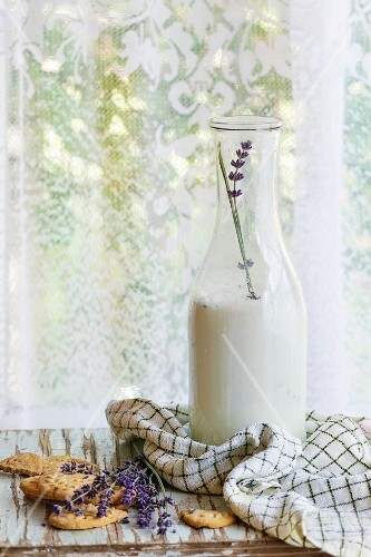 Lavender cookies and bottle of aromatic milk, served with kitchen towel on old wooden table with window at background